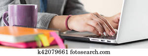 Close up view of businesswoman, designer or student hands working on laptop