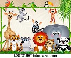 حديقة الحيوانات معرض الأشكال 1000 حديقة الحيوانات Images