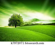 Eco green planet