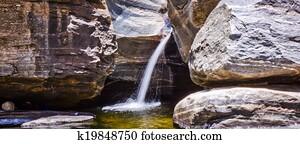 Spring Water in the Desert of Sabino Canyon