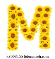 alphabet M , sunflower