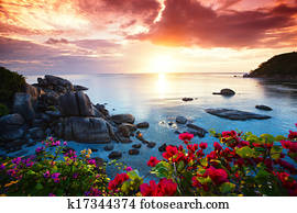 Tranquil beach resort, beautiful morning glory on the Koh Samui