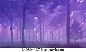 Misty pine forest at sunset