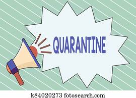 Writing note showing Quarantine. Business photo showcasing restraint upon the activities of an individual or the transport of goods Megaphone with Volume Sound Effect icon and Blank Jagged Scream Bubble.