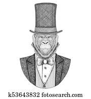 Gorilla, monkey, ape. Animal wearing jacket with bow-tie and silk hat, beaver hat, cylinder top hat. Elegant vintage animal. Image for tattoo, t-shirt, emblem, badge, logo, patch