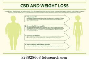 CBD and Weight Loss horizontal infographic