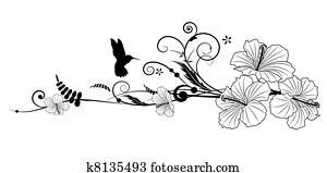hibiskus, und, kolibri