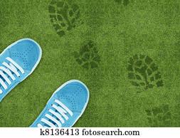 Shoe print on green grassland