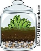 botanik, terrarium, abbildung