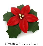 Clipart Flor De Nochebuena K19633551 Buscar Clip Art