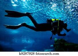 Diving in the ocean underwater