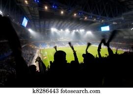 Fans celebrating goal