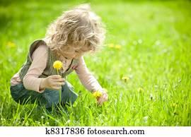 Beautiful child picks flowers