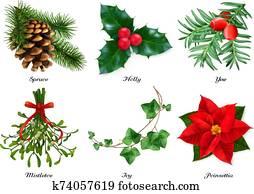 plants,, weihnachten, decorations., spruce,, holly,, yew,, mistletoe,, ivy,, poinsettia., 3d, realistisch, vektor, satz