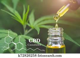 CBD elements in Cannabis, Hemp oil, medical marijuana, cannabinoids and health.