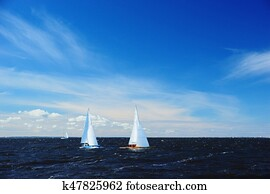 Yachts in sailing race