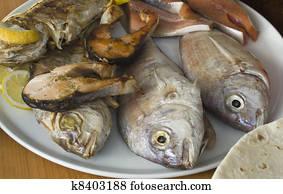 Essbare Fische