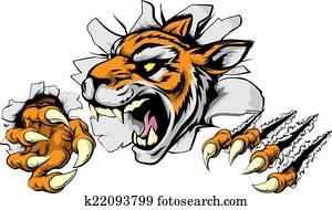 zornige, tiger, sport, maskottchen