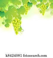 Grapes in Grapvine