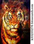 tiger collage on color abstract background, rust structure, wildlife animals, computer collage.