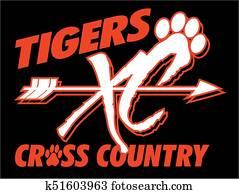 tiger, überqueren land
