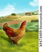 Hen and farm