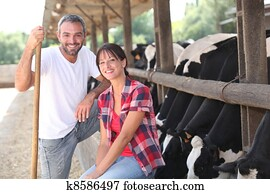 Cow farmers