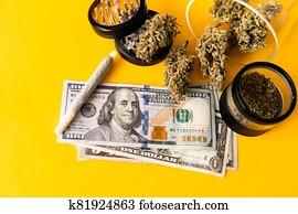 Marijuana weed bud and grinder. Indica medical health. Marijuana bud and banknotes of dollars.
