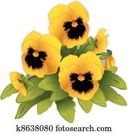 Gold Pansy Flowers