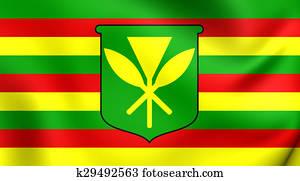 Kanaka Maoli Flag, Hawaii.