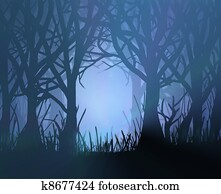 Spooky dark forest.