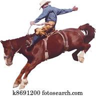Cowboy at the rodeo.