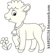 Small curly lamb