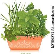 italienisches kraut, garden,, tonerde, blumentopf