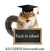 Funny chipmunk hold blackboard, back to school concept