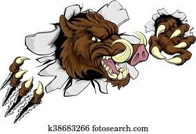 mittel, wild schwein, warzenschwein, razorback, maskottchen