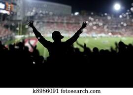 Crowd on the stadium