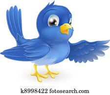 Bluebird pointing