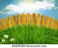 Wood fence and green grass meadow. Summer landscape with sun light