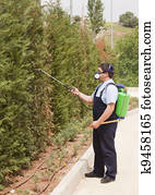spraying insects