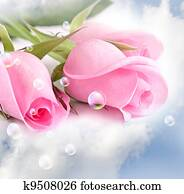Pink roses in the clouds