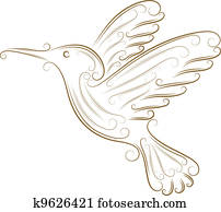 skizze, von, kolibri