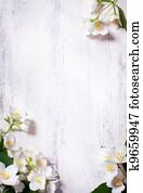 art jasmine spring flowers frame on old wood background