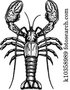 A black and white drawing of a lobster