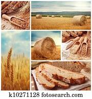 bread, und, ernten, weizen