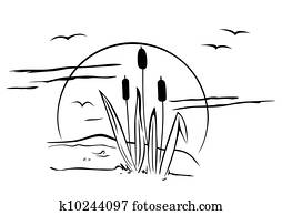 Cattails on illustration