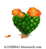Cute Heart Cactus Isolated on White
