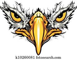 Eagle Eyes and Beak Vector Illustration