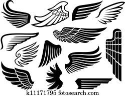 flügeln, sammlung, (set, von, wings)