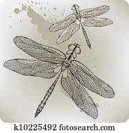 Flying dragonfly, hand-drawing. Vec